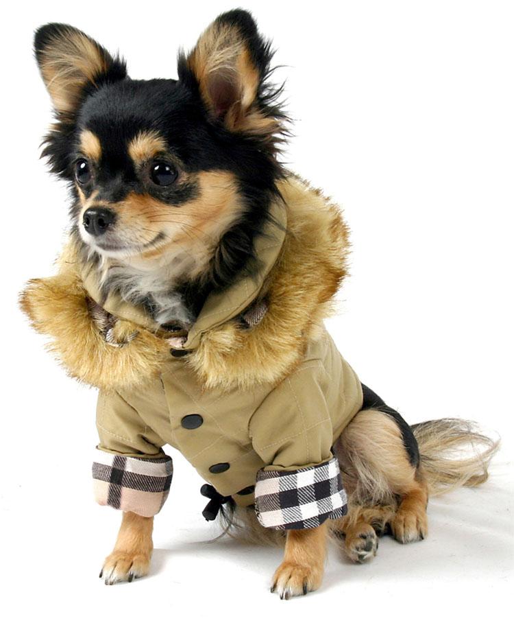 Dog Eskimo Coat Clothes Designed, What Are Eskimo Coats Made Of